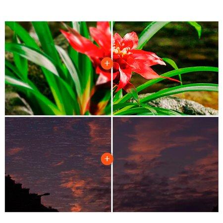Qualidade de Imagem com 4K HDR TV X-Reality Pro